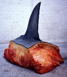 Killing sharks for their fins is abhorrent, but at least this one here died for more than a few bowls of soup, now