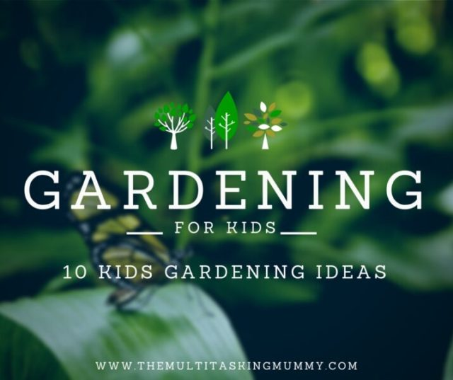 gardening for kids kids gardening ideas