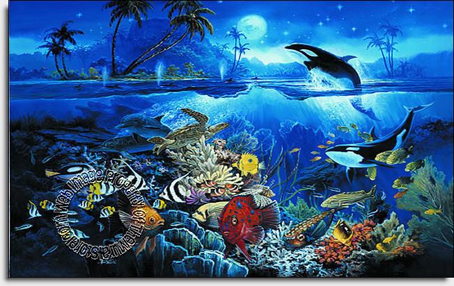 Waterfall Live Wallpaper Hd 3d Tropical Fish 1818 Wall Mural