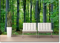 Woodland Forest Peel and Stick Wall Mural |Full Size Large ...