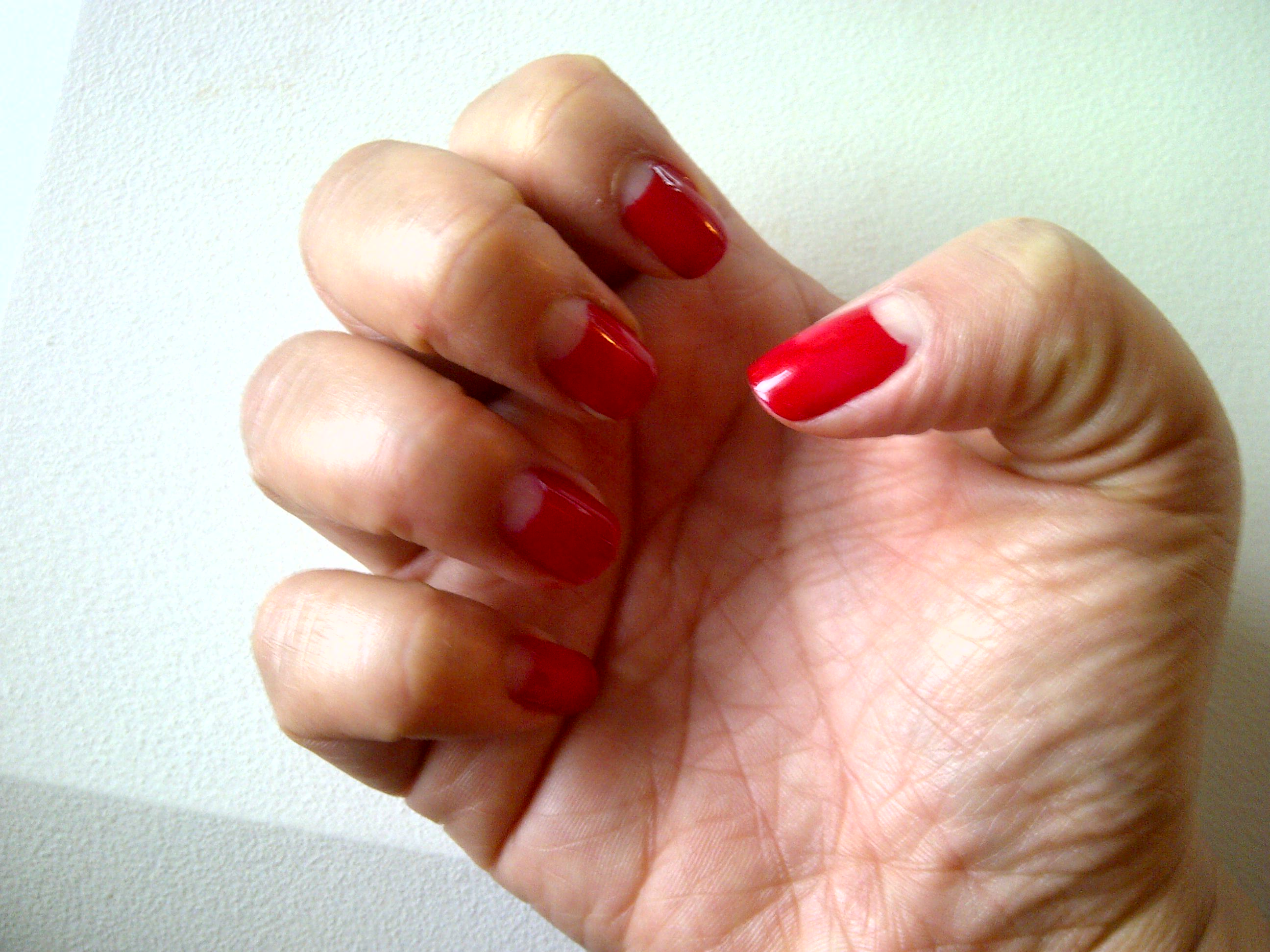 Diy French Manicure The Neon Leopard