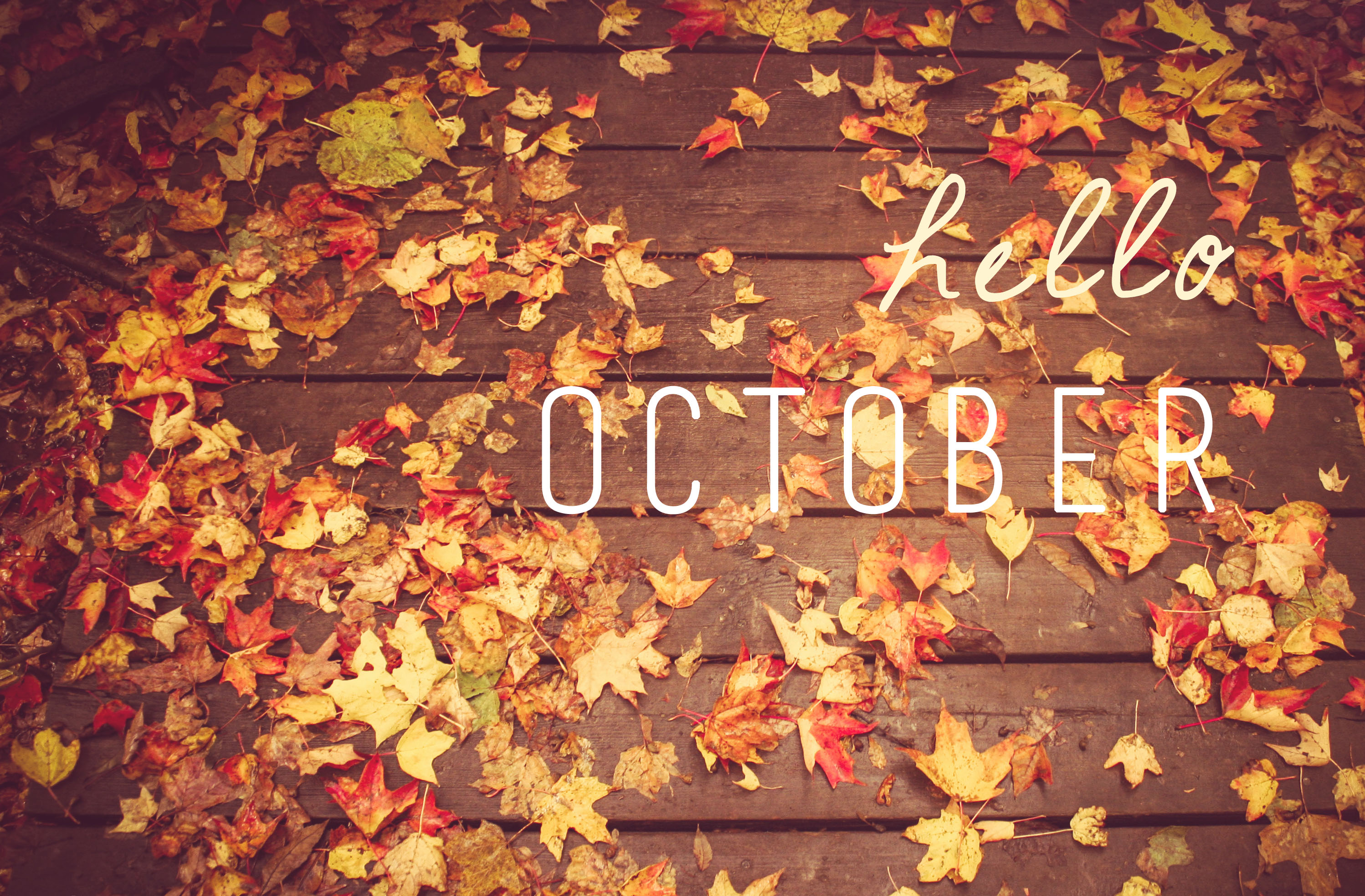 Signs And Sayings Hd Wallpapers Hello October The Nerdy Bookworm