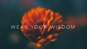 Menopause Wisdom Wednesday – Wear Your Wisdom With Pride