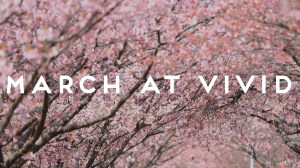 The Call to Wisdom – March at Vivid