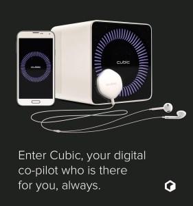20141121210637-01-Cubic