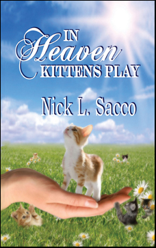 kittensplay
