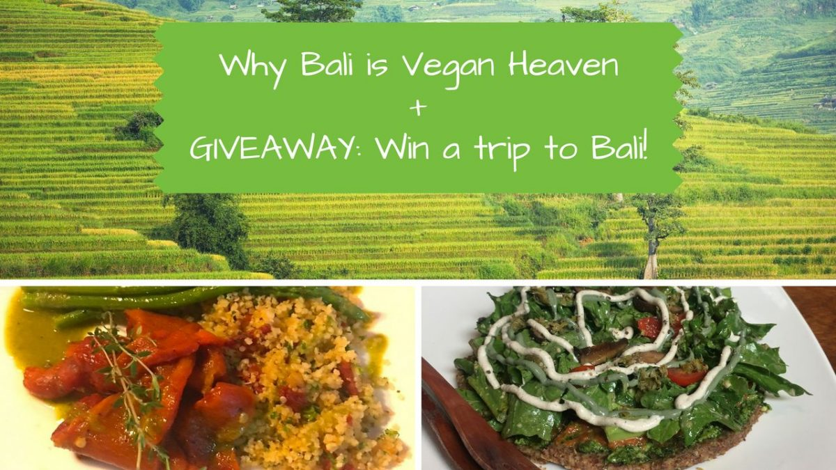 Trip Bali Vegan Bali Why Eating Out In Bali Is Heaven For Vegans