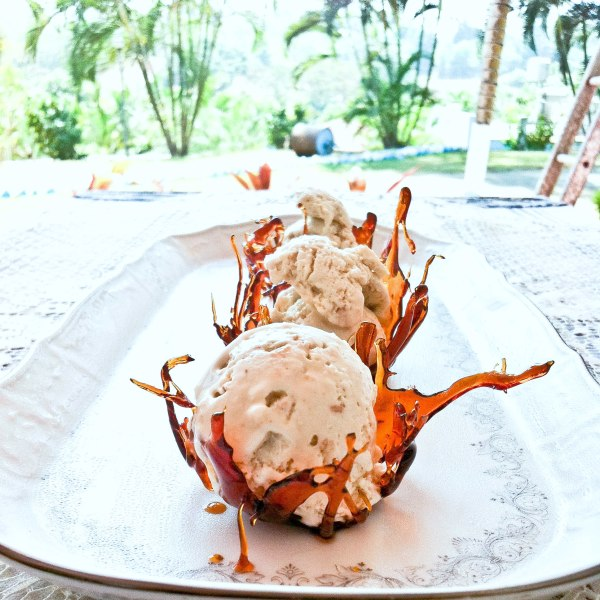 TOASTED COCONUT ICE CREAM - The Novice Housewife