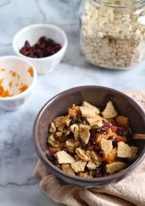 Pumpkin Latte Oats with Cranberries & Ginger Cookies