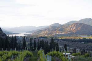 Wallpaper Wanderer: See Ya Later in Okanagan
