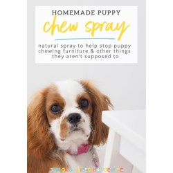 Cool I Ly Recommend Keeping A Puppy Cleaning Caddy Within Easy Reach Forwhen Your New Four Homemade Spray To S Puppy Chewing Furniture Organised Housewife bark post How To Stop Puppy From Biting
