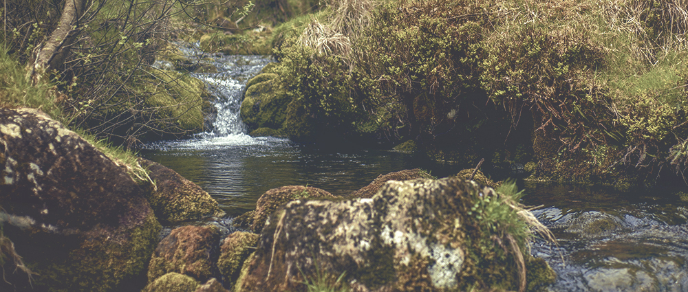 Wild Camping on Dartmoor River