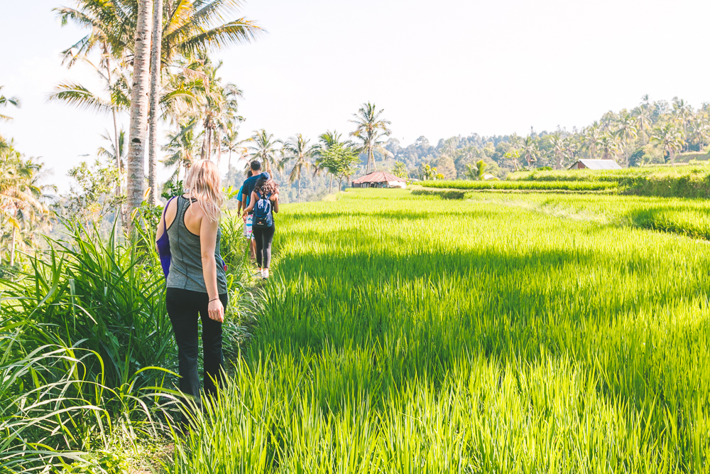 New Bali Tours - The Overseas Escape-21