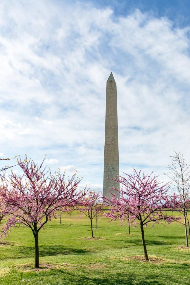 Washington DC by Amtrak - The Overseas Escape-39