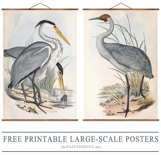 Over-Sized Heron Art Huge High Resolution Free Printable! The