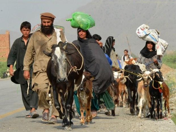 IDPs Photo