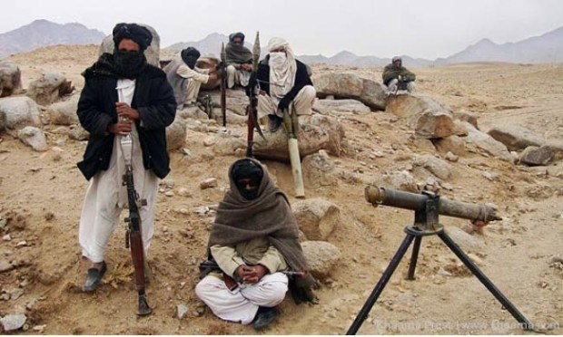 Taliban 24