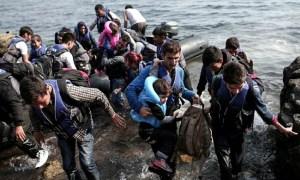 Refugees Arive