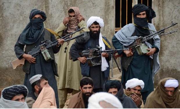 Taliban467