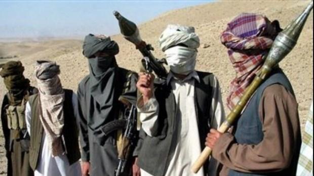 Taliban-militants-615x300@2x