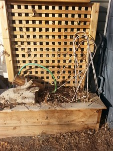 wicking bed, cedar planter