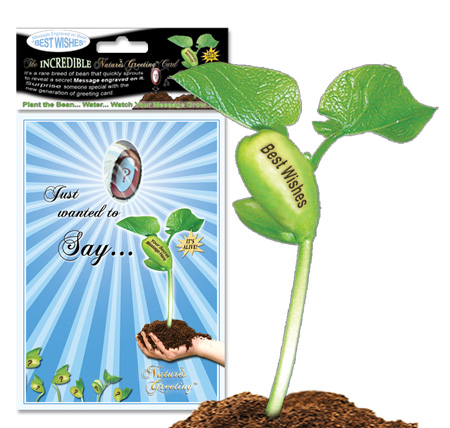 Nature\u0027s Greeting Card and Pepper Plant Seed - Magic Plant Farms