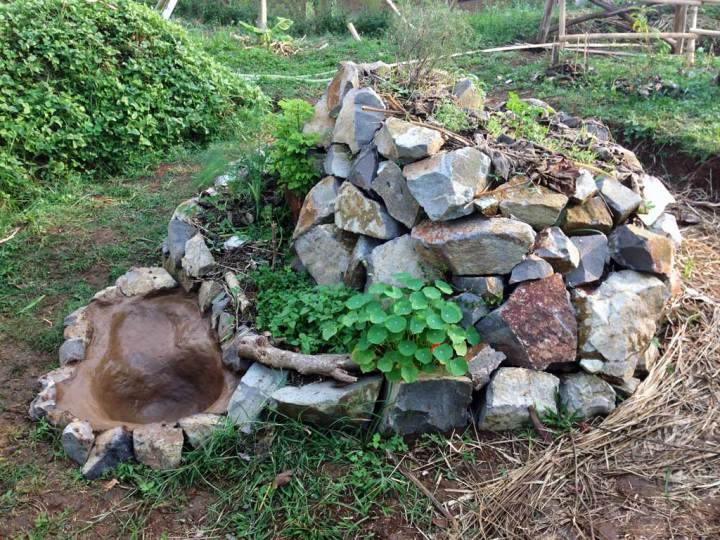 Permaculture Young Herb Spiral