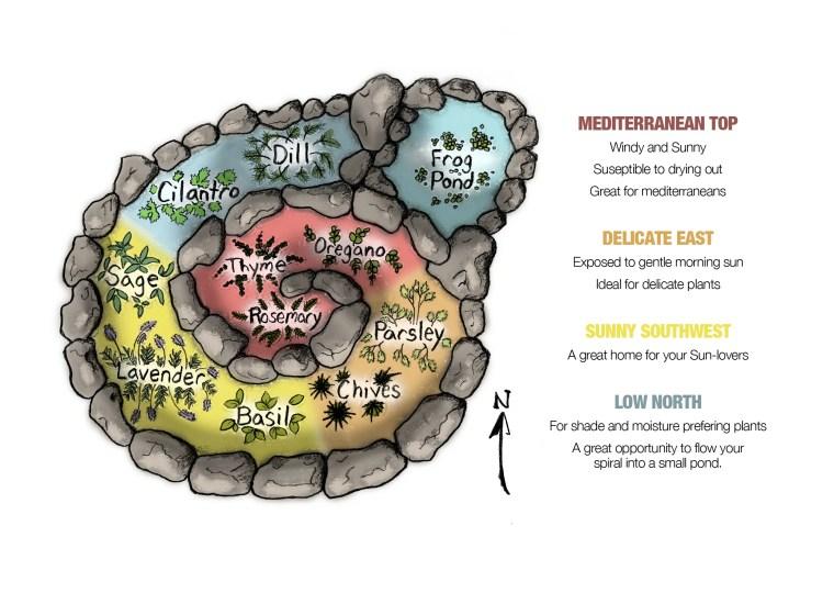 Herb Spiral Regions