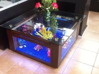 68 Gallon Square Coffee Table Aquarium, Fish Ready with ...