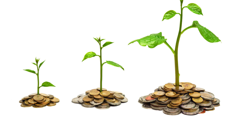 Purpose and Profit - The Philadelphia Citizen - profit & loss sheets