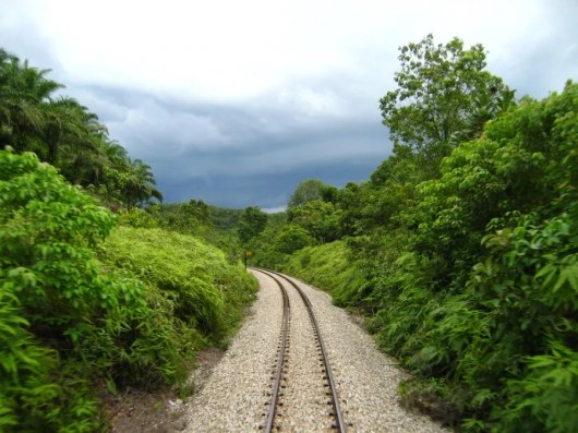 Take a ride on the Jungle Train in Malaysia. Image courtesy of Shutterstock.
