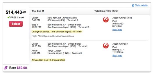 JAL Flight to Japan