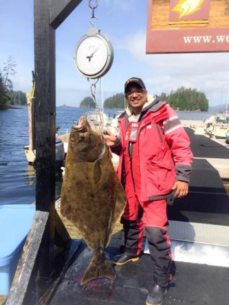 Arif Jaffer stands with his prized catch of the day, a 65-pound Halibut.  The weekend record for Halibut caught was 235 pounds.