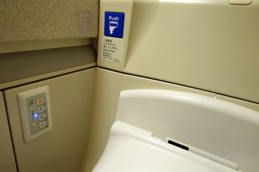 Of course, there's a Japanese-style toilet in each lav.