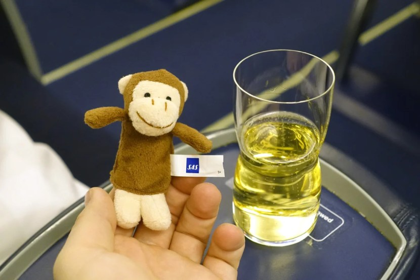 My pre-departure Champagne and finger puppet.
