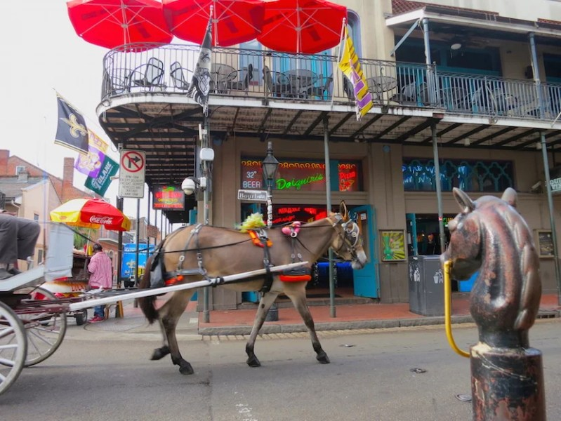 Both carriages and neon are sights of the Vieux Carré in 2016.