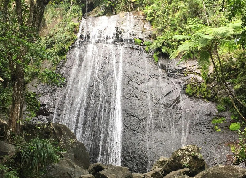 Hail a cab and set off to explore sights like the El Yunque National Forest, about an hour's drive from Old San Juan.
