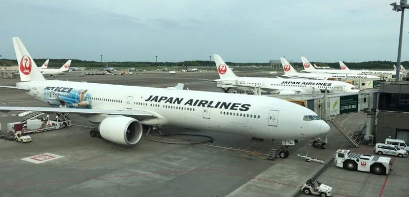 Japan Airlines planes lined up at the gate in Tokyo.