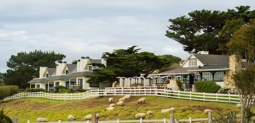 Even tough guys like Clint Eastwood have a soft spot for sheep. Image courtesy of Mission Ranch Hotel.