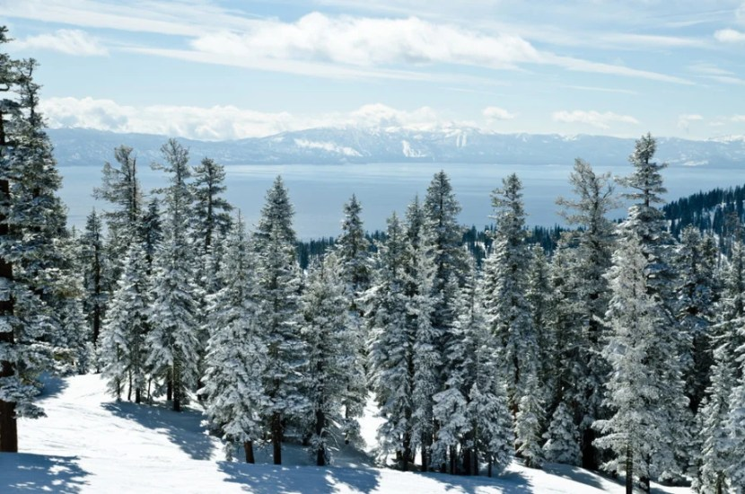 View from a Lake Tahoe ski resort - Courtesy of Shutterstock