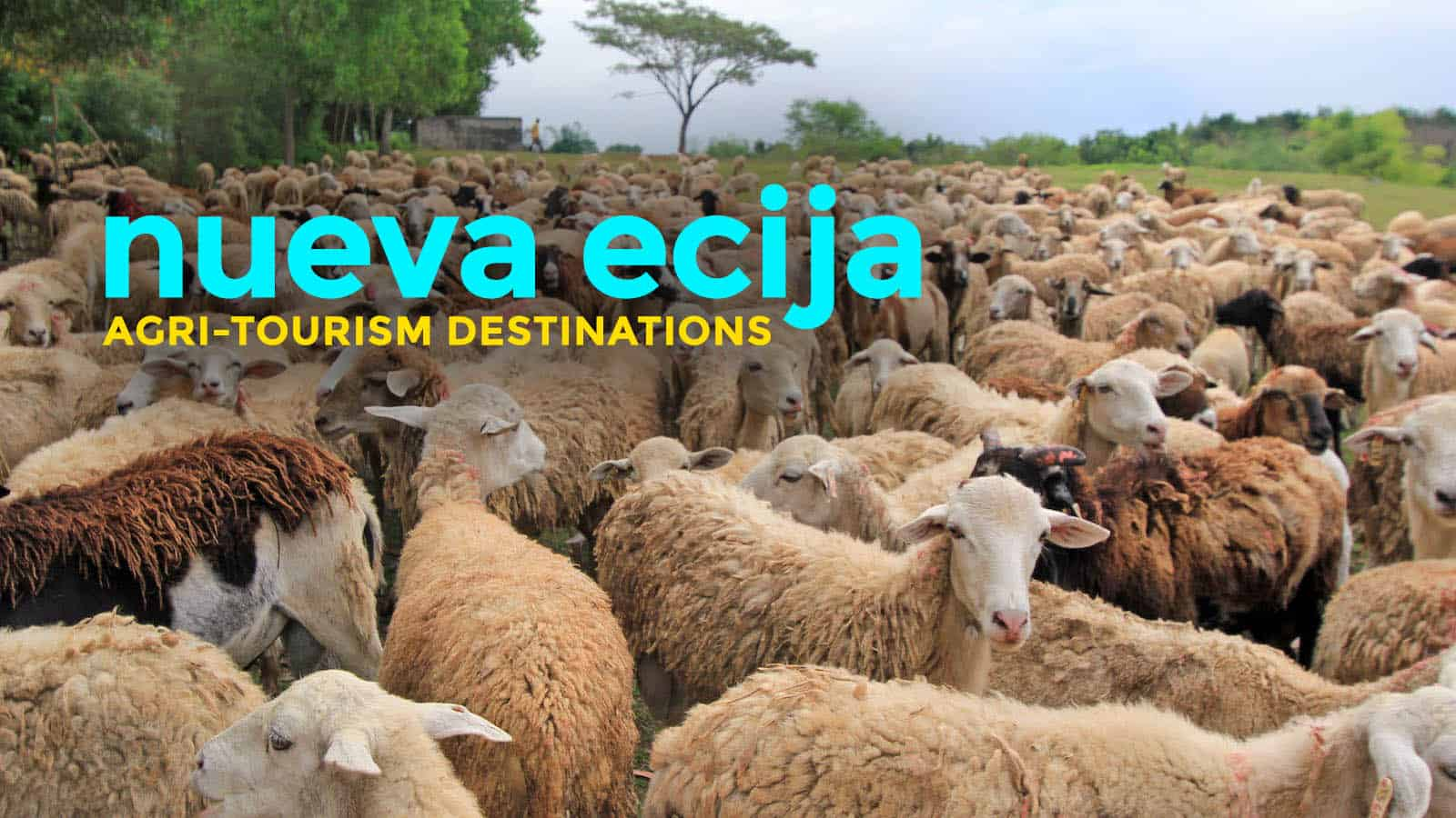 Tourism Destinations 8 Agri Tourism Destinations In Nueva Ecija The Poor Traveler