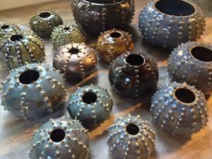 Gina Feddersen Urchin Project