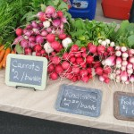 Vendor Highlight: Rosemont Valley Farm