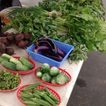 Vendor Highlight: Xeng's Vegetables