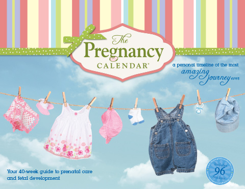 the pregnancy calendar your 40 week guide to prenatal care and