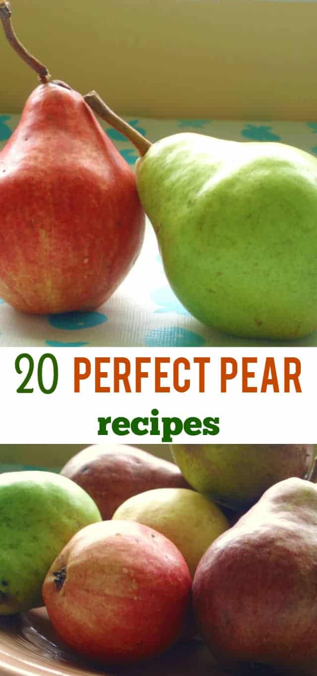 A delicious round up of pear recipes - desserts, salads, sauces, and more!