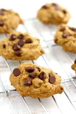25 of the best vegan chocolate chip cookie recipes