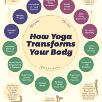 HOW YOGA TRANSFORMS YOUR BODY
