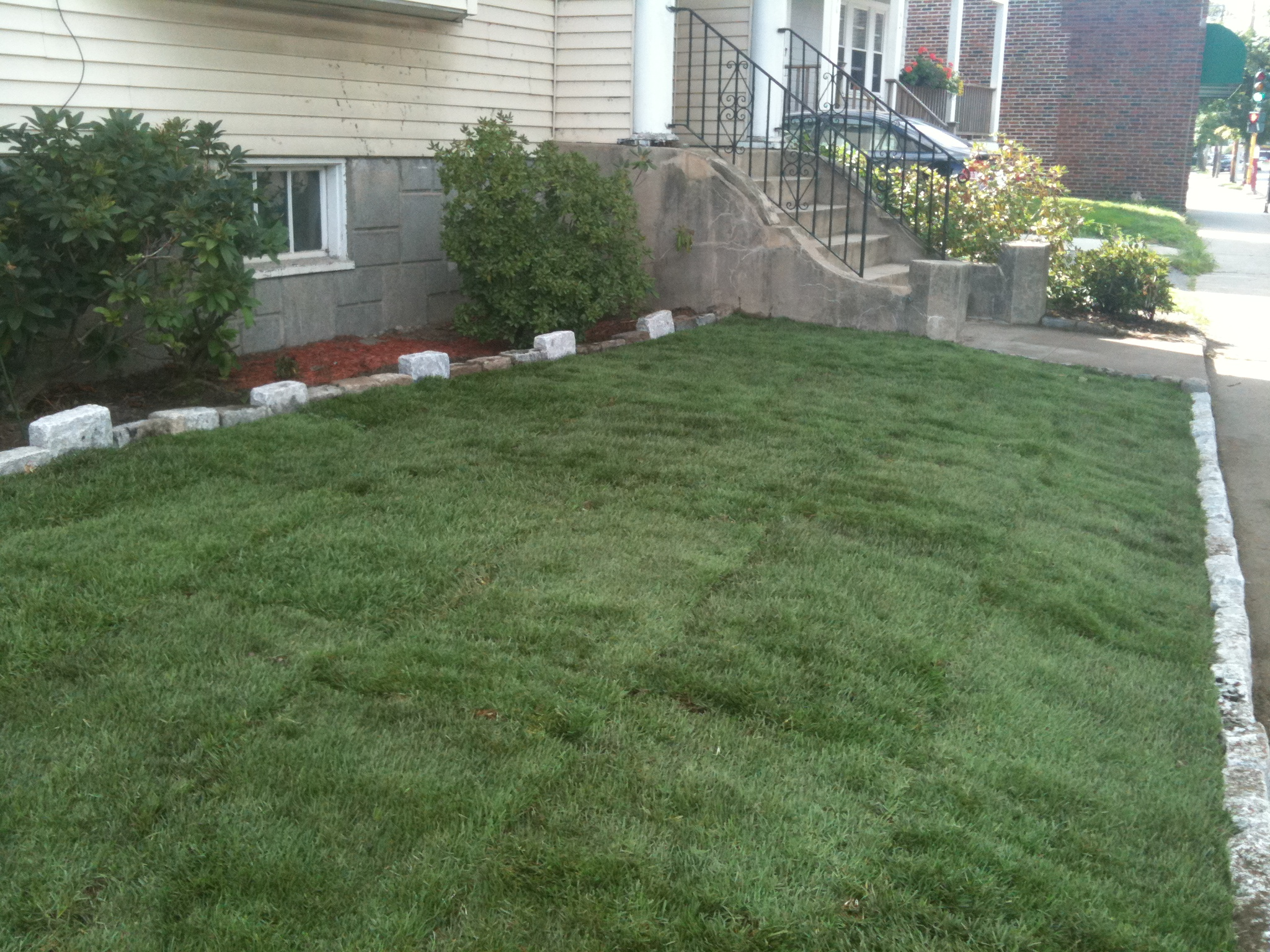 Backyard Clean Up Backyard Cleanup And New Lawn Mittra Productive Landscapes