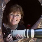 Laura Erickson Will Be the Keynote for The 15th Annual High Plains Snow Goose & Heritage History Festival
